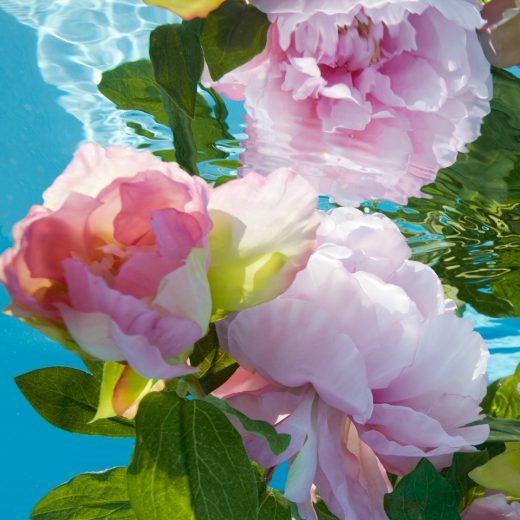 Fleur de Romance